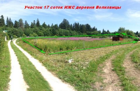 Участок 16 соток ИЖС деревня Волковицы, Ломоносовский р-н. - Фото 2