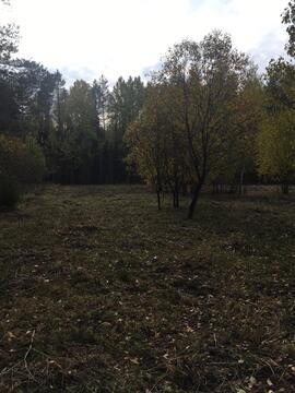 24 сотки у леса, Прописка, д. Маренкино - Фото 5