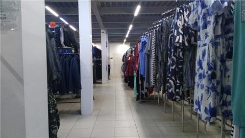 Торговое помещение 720м2 по адресу Ломоносова 73а (ном. объекта: 181) - Фото 4