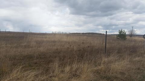 Продам земельный участок 50 соток (ИЖС), д.Плюсково - Фото 1