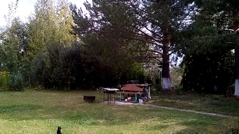 Дом на берегу реки Кама - Фото 5