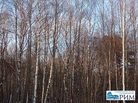 Продается 14 соток в 14 км от города, Земельные участки Озеро, Череповецкий район, ID объекта - 200895800 - Фото 1