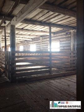 Животноводческая ферма в Семеновском районе - Фото 4