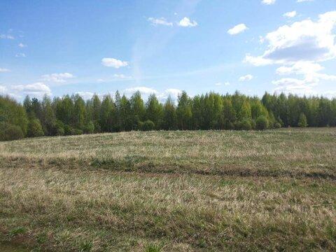 Продам: земля 520 соток, деревня Ростовка - Фото 5