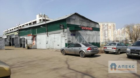 Продажа помещения пл. 196 м2 под производство, автосервис м. Бибирево . - Фото 4