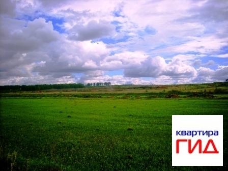 Земельный участок в Сосновском районе, д Костыли - Фото 1