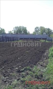 Продажа дома, Ордынское, Ордынский район, Ильича - Фото 3