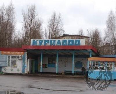 Участок 6 соток в СНТ Курилово, новая Москва, Варшавское ш. - Фото 3