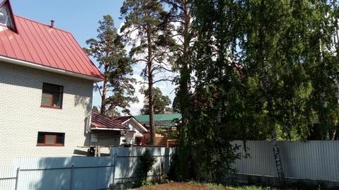 Земельный участок в бору - Фото 3