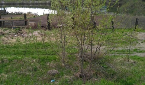 Земельный участок, Кильдинстрой, Набережная - Фото 2