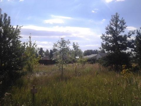 Участок в Новоселкино - Фото 3