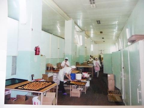Действующие производств в Тульской области с доходом 10 мил в месяц - Фото 2