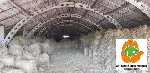 Крестьянско-фермерское хозяйство в Шадрино - Фото 5