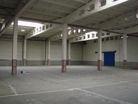 Склады на территории базы от 540 кв.м. и более. - Фото 4
