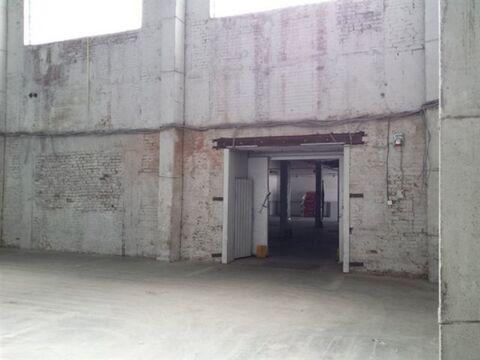 Сдам складское помещение 470 кв.м, м. Бухарестская - Фото 3