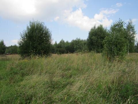 Земельный участок 27 соток в д. Пушкино - Фото 2