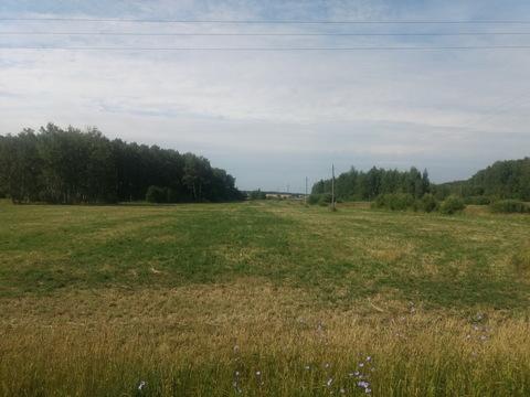 Продается участок сельхозназначения у д. Иванчиково Зарайского р-на МО - Фото 4