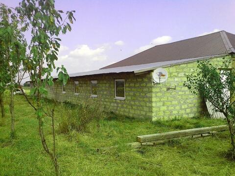 Продается ферма с животными на участке 60 га, с. Темнолесская - Фото 1