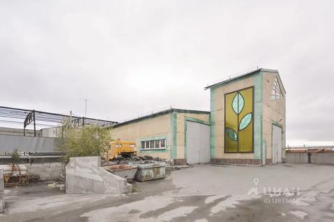 Производственное помещение в Тюменская область, Тюмень Московский . - Фото 1