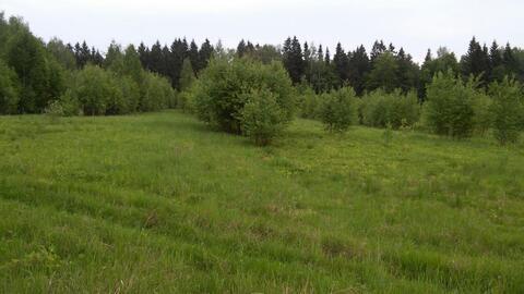 Сельский рай - Фото 1