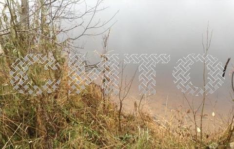 Продажа участка, Куность, Белозерский район - Фото 2