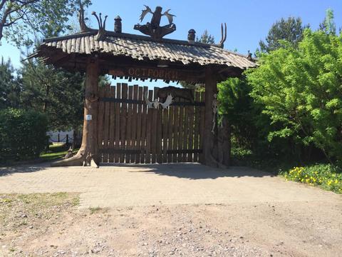 Солнечный участок в Островках - Фото 1