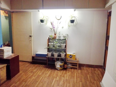 Сдается комната 14м на Нефтяников у ТЦ Рио на Московском - Фото 4