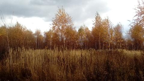 Большое Петровское 10 соток, знп для ИЖС, 53 км от МКАД. - Фото 4