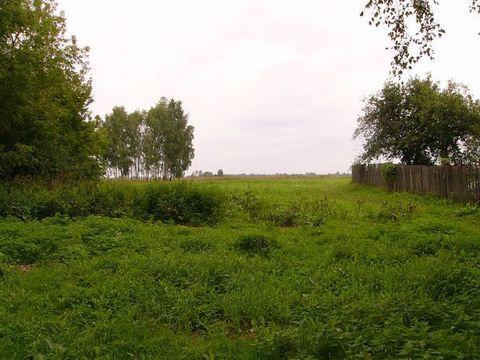 Участок 9 соток в д.Уткино, Клепиковского района. - Фото 4