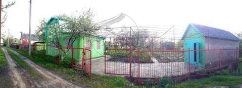 Продажа дачи, Безлюдовка, Шебекинский район, Сосновая 4 - Фото 3