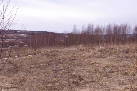 Продается участок 588 соток в деревне Лизуново - Фото 3