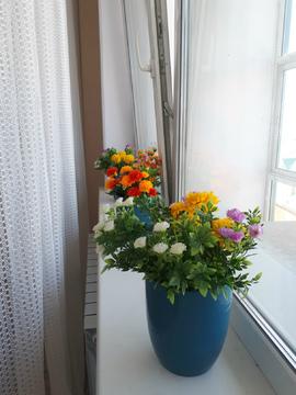 Большая 1-комнатная в Ершовском - Фото 1