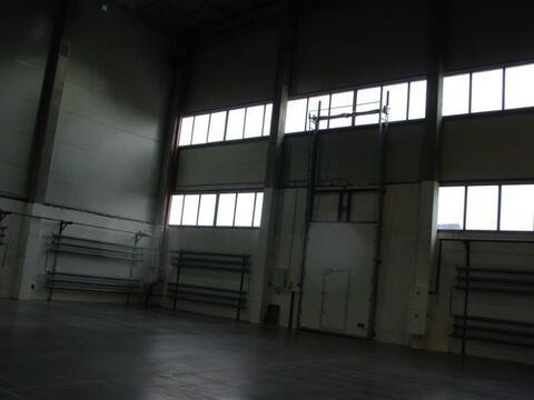Сдается склад, класс В+, 500 кв.м - Фото 2