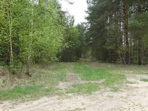 Продам: участок 325 соток, Калуга - Фото 4