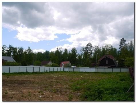 Прекрасный участок для строительства вашего дома в лесном массиве ! - Фото 3