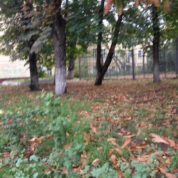 Продажа квартиры, м. Пушкинская, Палашевский Малый пер. - Фото 5