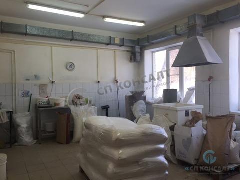 Сдам помещение под пищевое производство - Фото 2