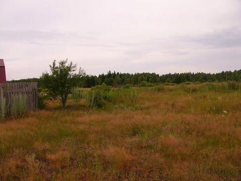 10 соток ЛПХ в д.Томаково, Клепиковского района. - Фото 1