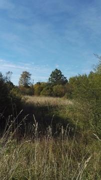 Продажа участка, Новая Уситва, Палкинский район - Фото 2