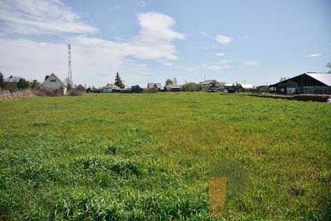 Продам дом в поселке Сосновка, Набережная ул, 4, Сосновка с, 30 км . - Фото 4