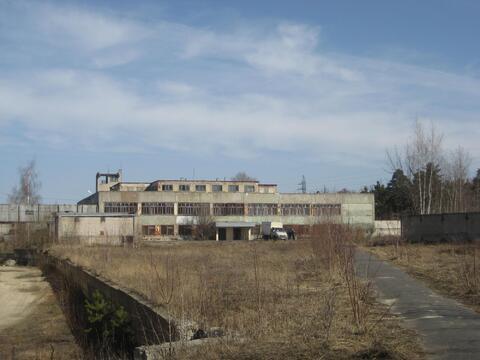 Здание в Выксе - Фото 1