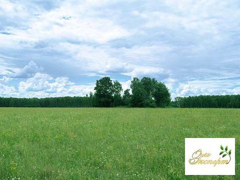 Продажа земельного участка промышленного назначения. - Фото 2