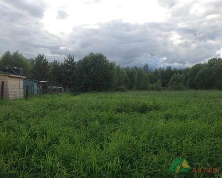 Продается дом в красивом месте, д. Горбаново - Фото 5
