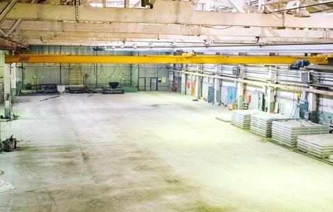 Сдам производственное помещение 5000 кв.м. - Фото 3