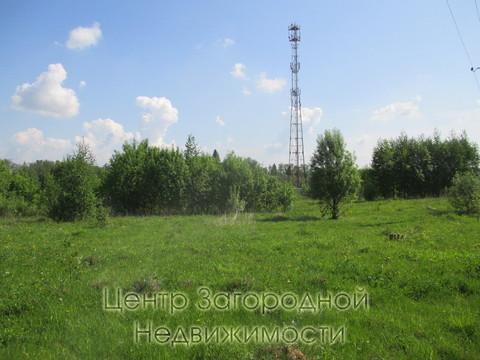 Участок, Ярославское ш, 52 км от МКАД, Репихово п. Ярославское шоссе, . - Фото 3