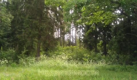 Участок, Новорижское ш, Рублево-Успенское ш, Минское ш, 45 км от МКАД, . - Фото 2
