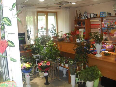 Торговое помещение, 40 кв. ул. Красная - Фото 5