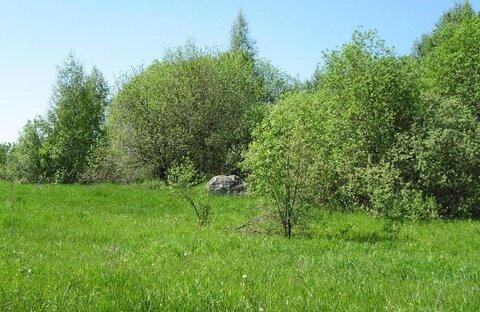 1 га - 100 соток кфх в Переславском районе, д.Захарово-Лисавы - Фото 1