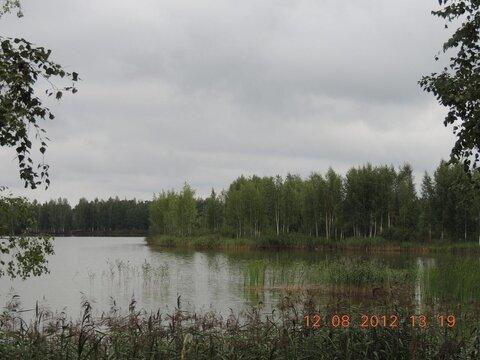 Продам земельный участок 8 соток (ЛПХ), д.Владимироовка - Фото 1