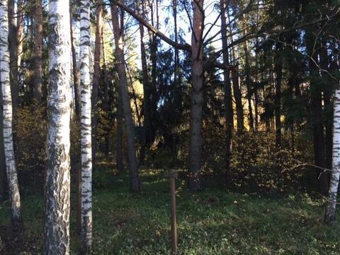 Предлагаем земельный участок площадью 15 соток в д.Маслово около . - Фото 5